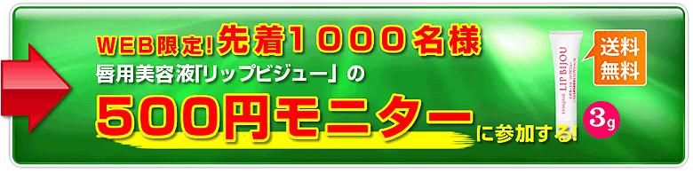 リップビジュー500