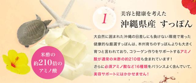 琉球すっぽんのコラーゲンゼリースッポン